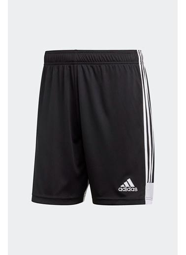 adidas Adidas Erkek Futbol Şort Tastigo19 Sho Dp3246 Siyah